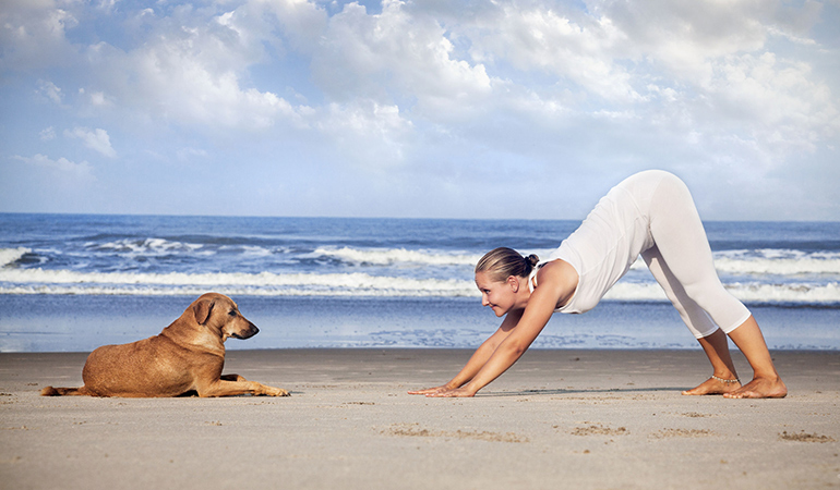 The downward dog pose helps stretch the entire back muscles