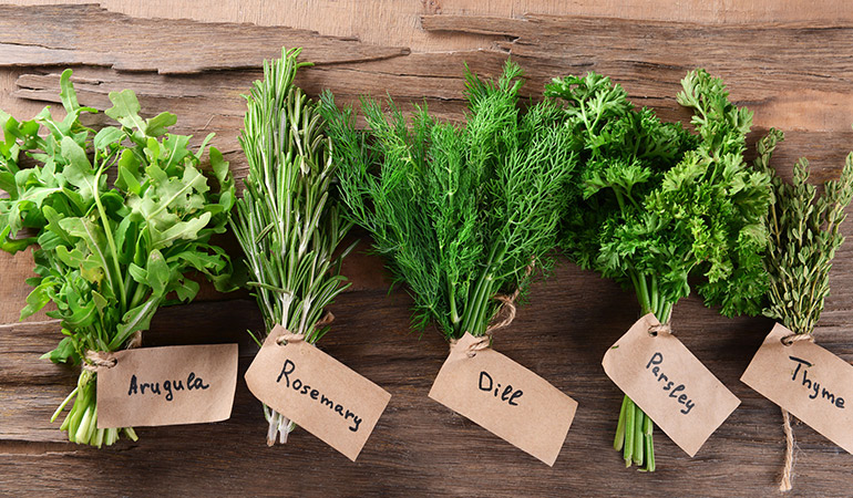 Freeze herbs in oil to preserve them