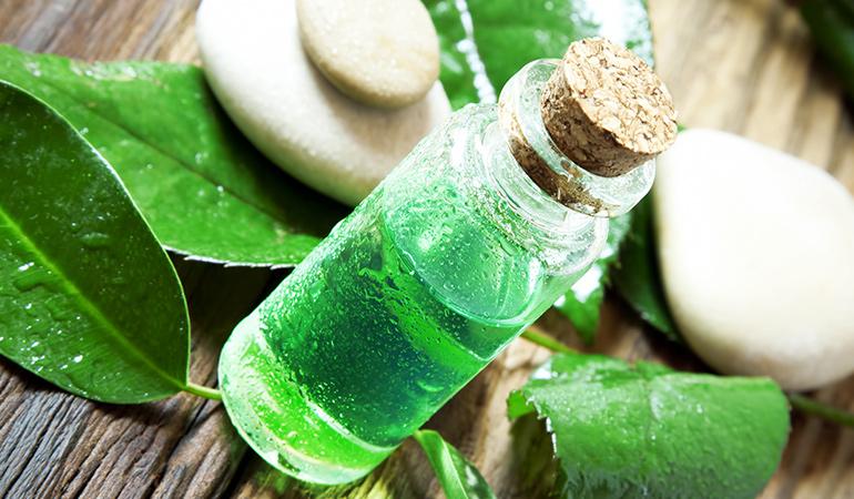 antimicrobial properties of tea tree oil
