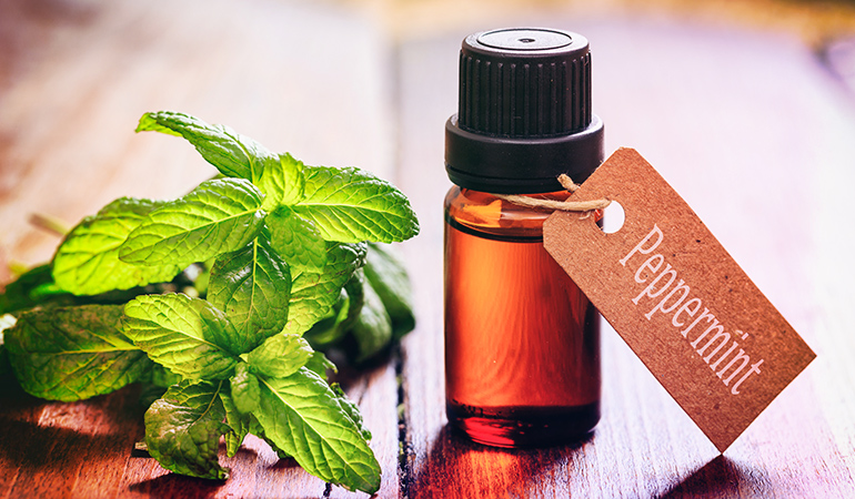 Gargle with peppermint boiled in water or use the essential oil