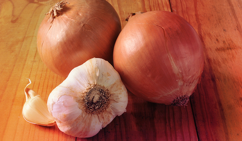 Onions and garlic should always be stored in a cool and dark corner on the counter, and never be refrigerated