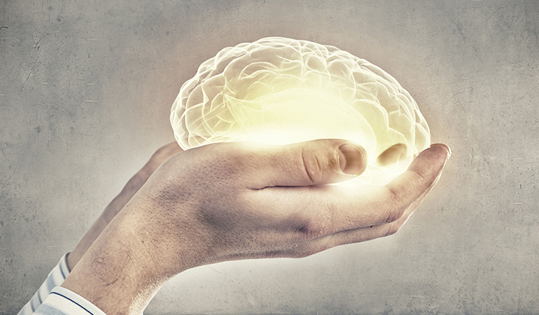 Salt aids brain and muscle function