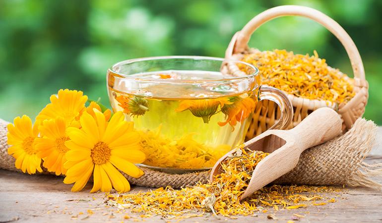 Calendula's anti-inflammatory properties make it effective against sunburn and acne