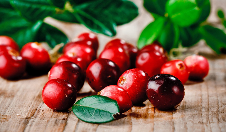 Cranberries that bounce when dropped indicate that they're ripe