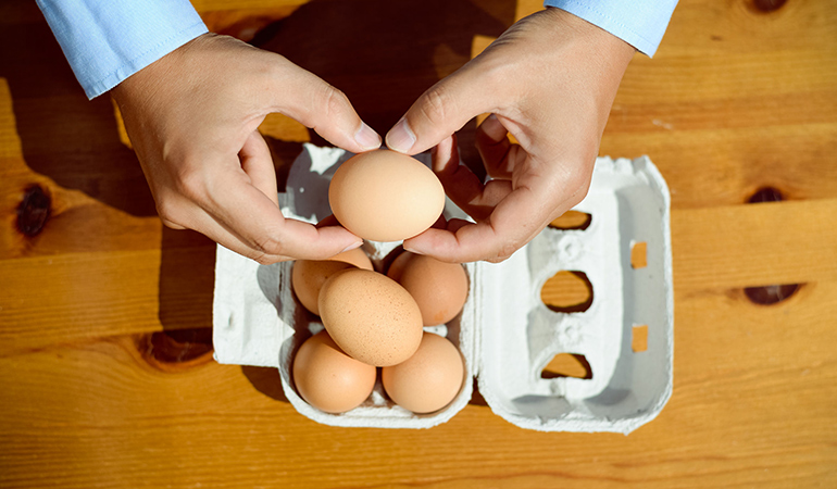 Eating protein increase satiety