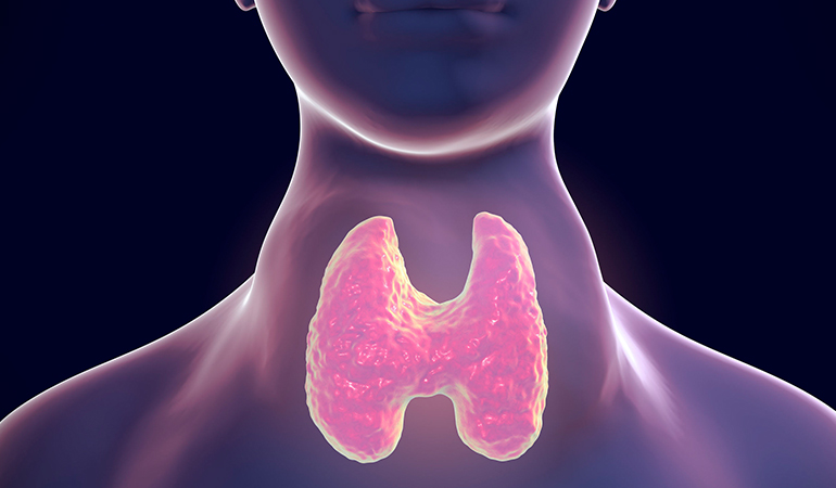 Consuming goitrogen-rich foods in excess can hamper iodine absorption and thyroid stimulating hormone production