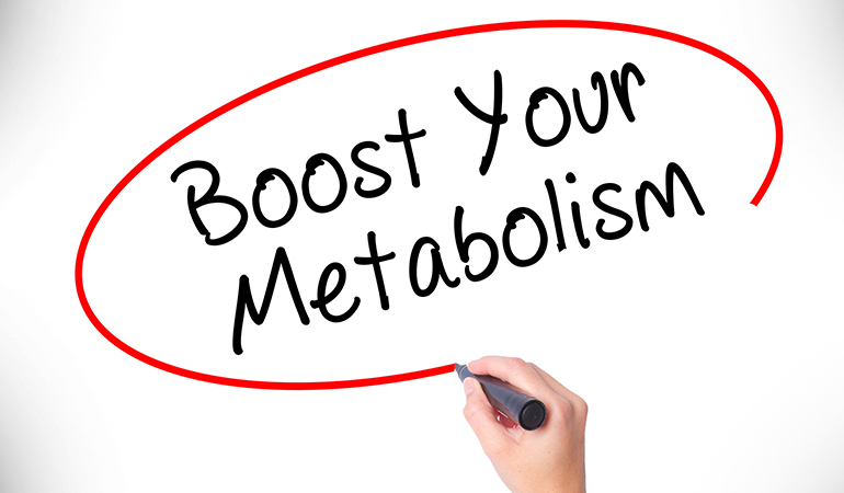 Your gut supports metabolism.