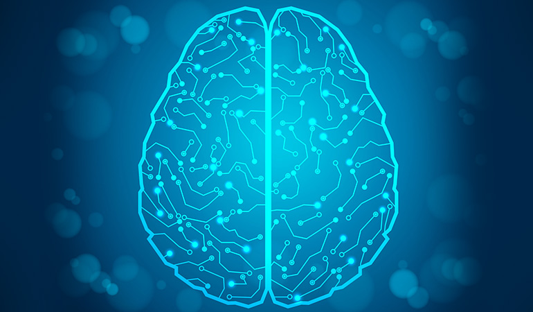 Dyslexia may be genetic or related to a problematic brain anatomy or function.