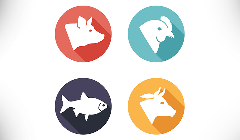 Cow, pig, fish, and chicken are sources of collagen supplements