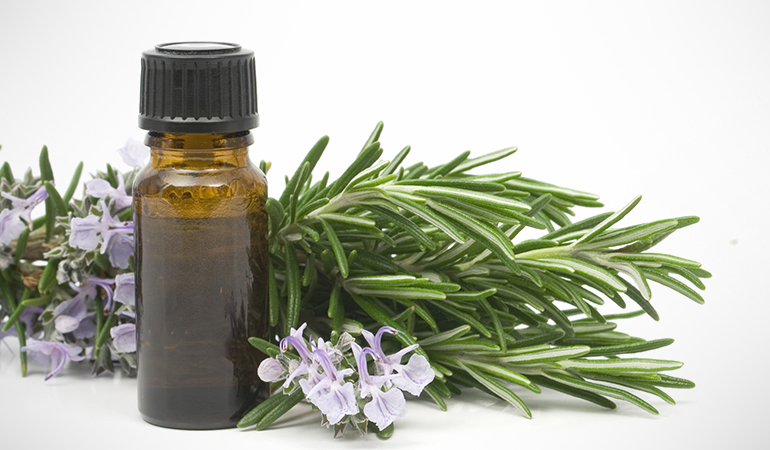 Rosemary oil extracts are known for their anti-fungal and antiseptic properties