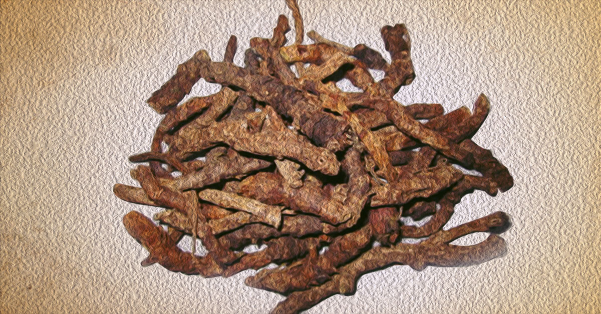 Kutki is used for all matters related to liver health and digestion.