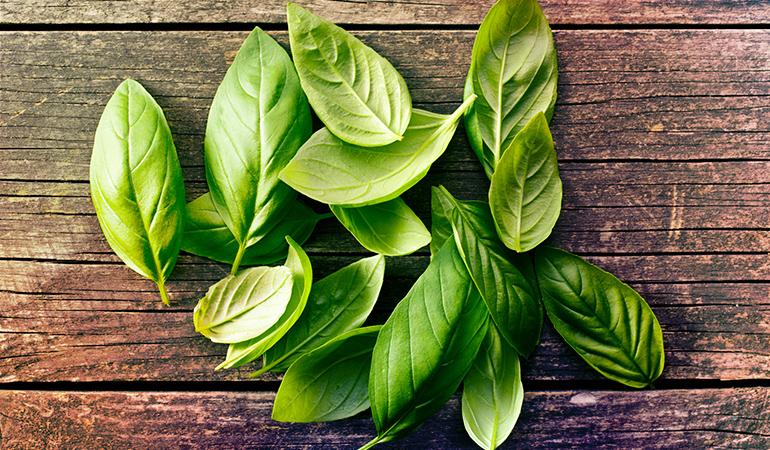 A tablespoon of dried basil: 0.48 mg of vitamin E (3.2% DV)