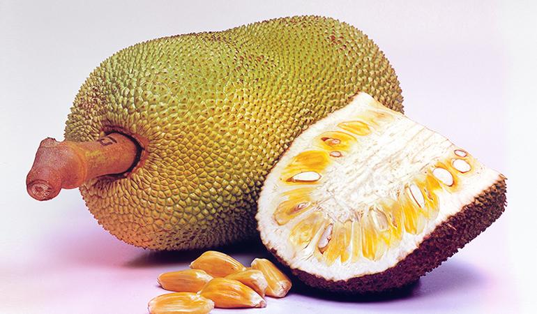 A cup of sliced, deseeded jackfruit: 40 mg of calcium (3.1% DV)