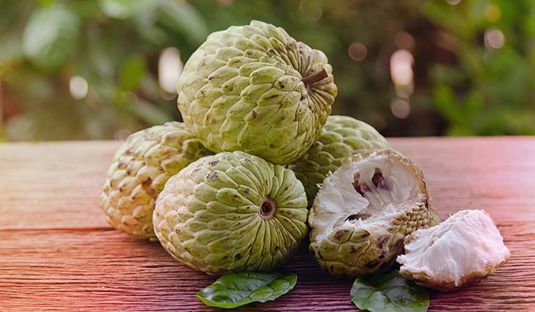 A 100 gm serving of custard apple: 30 mg of calcium (2.3% DV)