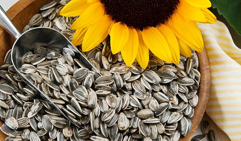 An ounce of sunflower seeds has 9.85 mg of vitamin E (65.7% DV).