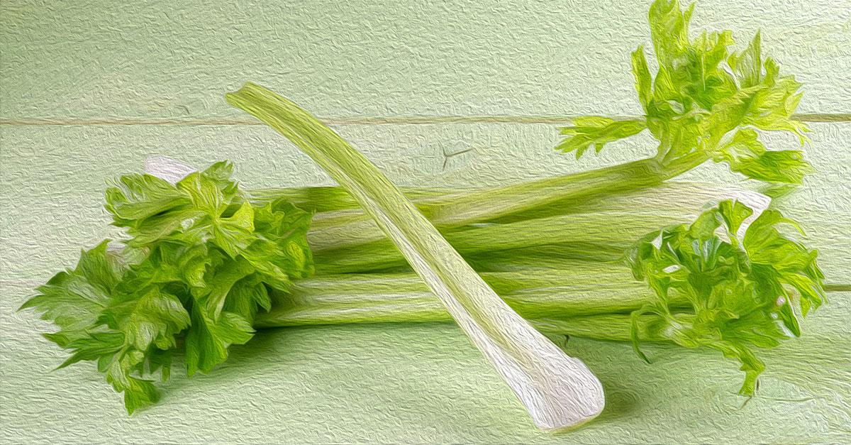 Health benefits of celery.