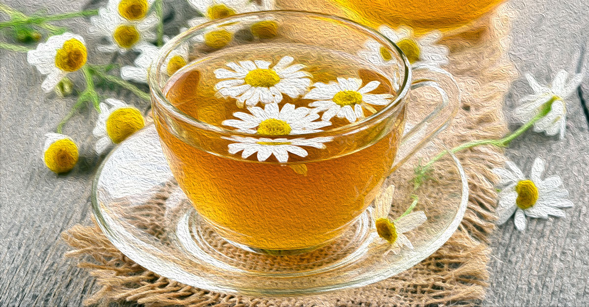 Health benefits of chamomile tea include treating insomnia, depression, and anxiety.